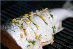 Grilled Wild Salmon Recipe